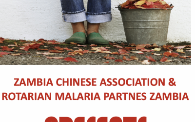 Zambia Chinese Association & Rotarian Malaria Partners Zambia Collaborate on Environmental Clean-Up Competition